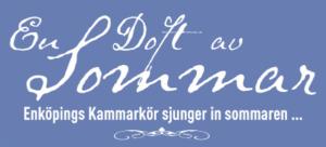 Enköpings kammarkör